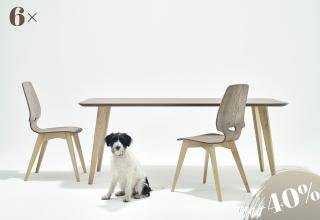 6×FINN chair-table ash gray