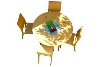 FOCUS round table